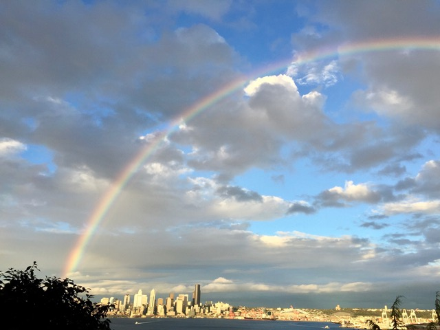 Therapy And Counseling Services In Seattle Wa
